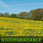 Biodegradable Oils, Lubricants and Greases